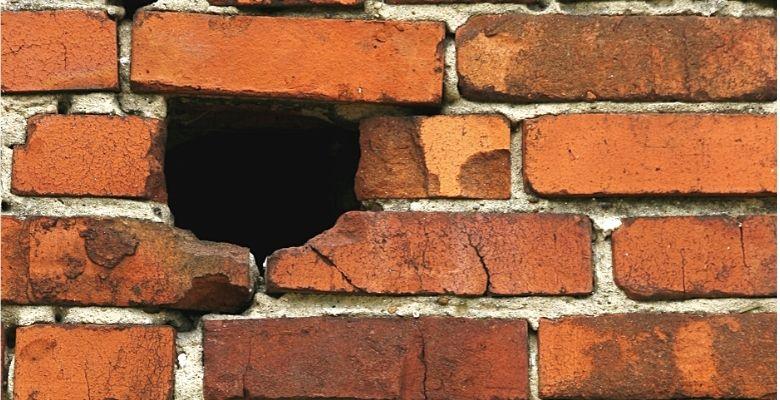 wall whole